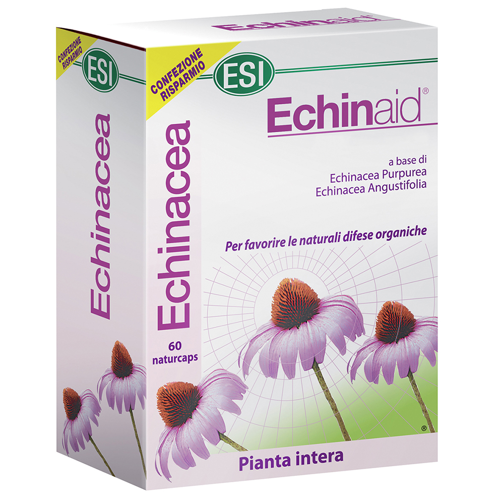 Picture of Echinaid, 60 naturcaps