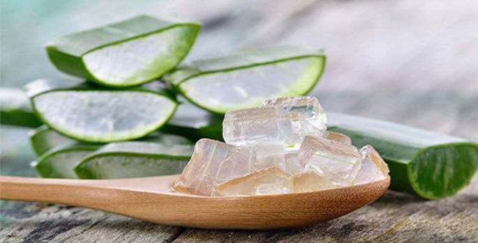 Picture for category ALOE VERA GEL