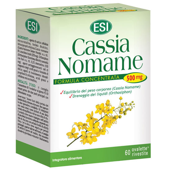 Picture of Cassia Nomame